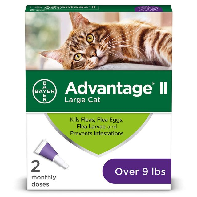 Bayer Advantage II Prevention Cat Flea Treatment