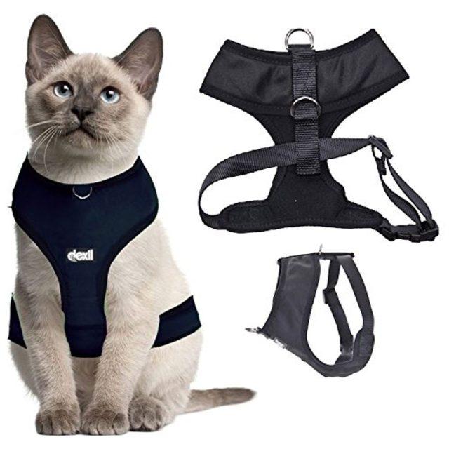 Dexil Luxury Water-Resistant Padded Cat Harness