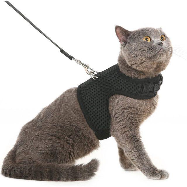 Pupteck Adjustable Escape-Proof Cat Harness