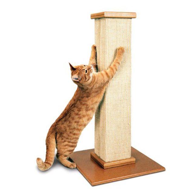 SmartCat Pioneer The Ultimate Cat Scratching Post